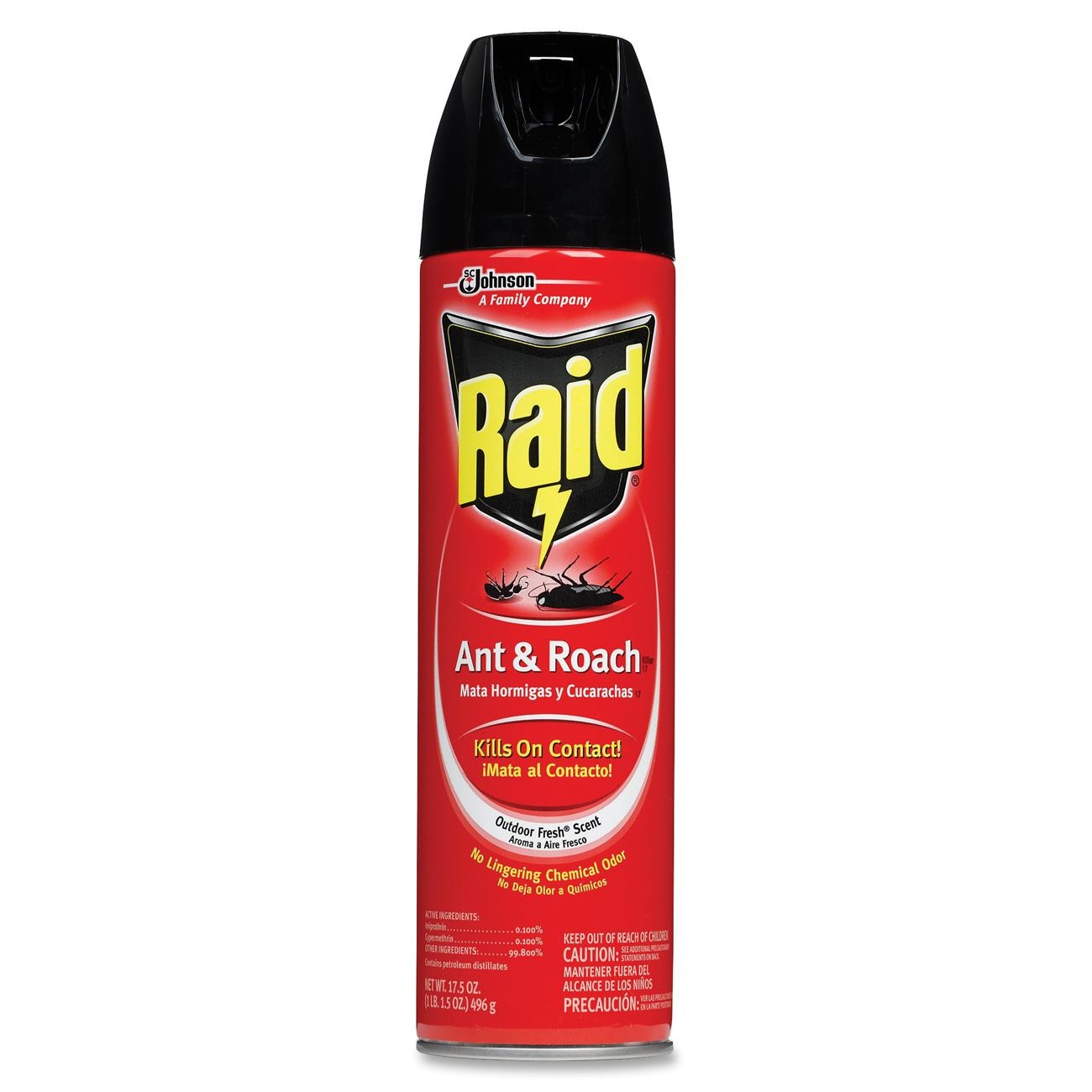 Raid Ant And Roach Aersol, Unscented, 17.5 oz